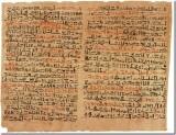 papyrus-63004__340_thumb.jpg